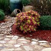 Front Pathway Landscape Design Houston | Blending Plants & Colors