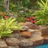 Houston Pool Side Landscape Design | Pool Landscape Design Houston