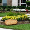 Landscape Design & Install Services Houston