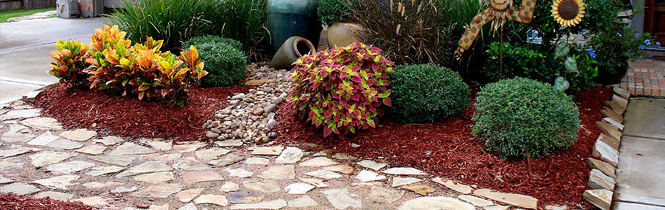 Front Pathway Landscape Design Houston – Blending Plants & Colors - Front Pathway Landscape Design Houston - Blending Plants & Colors