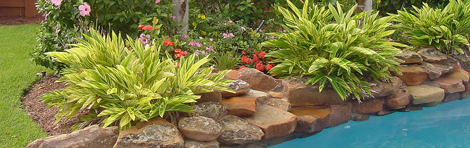 Houston Pool Side Landscape Design - Pool Landscape Design ...