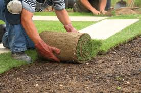 Backyard Landscaping River Oaks - Luxury Landscaping River Oaks Houston Landscaper