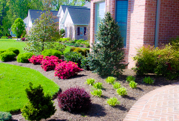 Front yard landscaping houston for Easy care front gardens